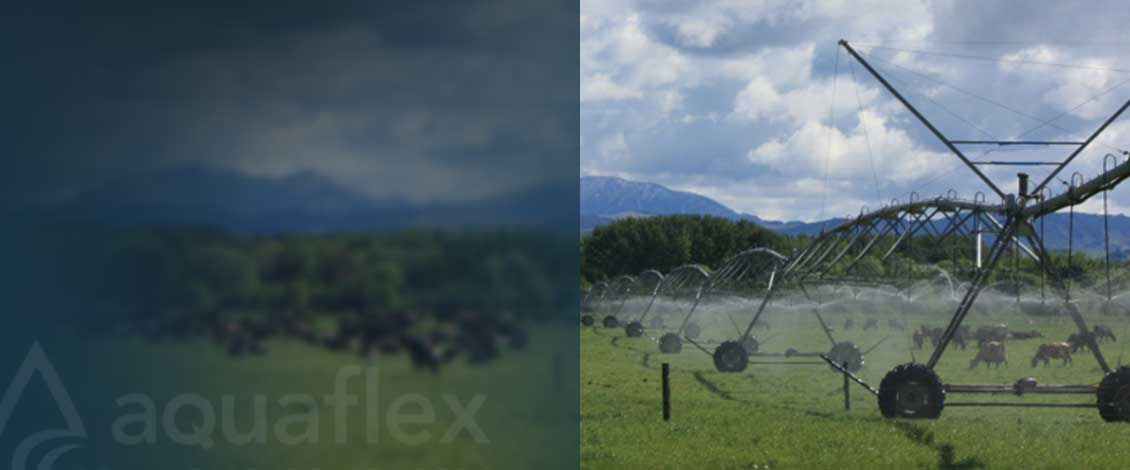 Aquaflex in pasture
